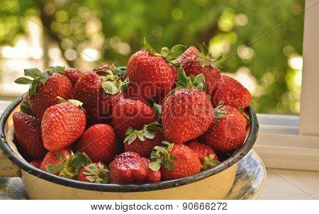 Ripe Berries, Strawberry