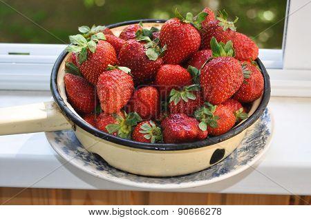 Red, Juicy Strawberries.