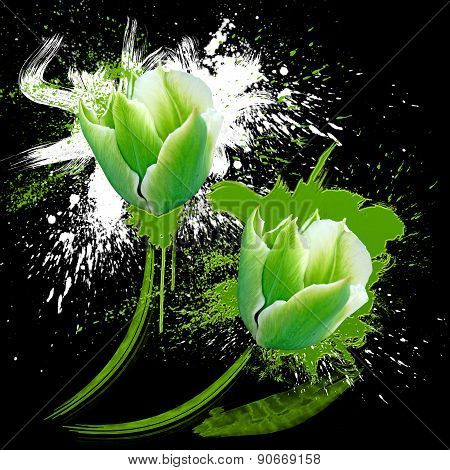 Green And White Tulips With Spots Watercolor