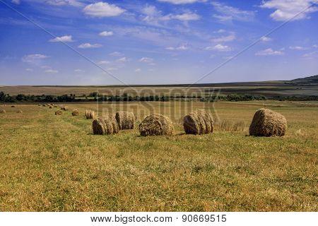 Hay Rolls On Arable Farmland