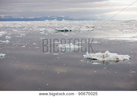 Arctic Seascape In Greenland