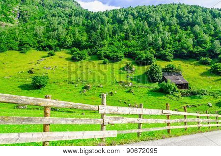 Country road and green alpine meadows in Austria