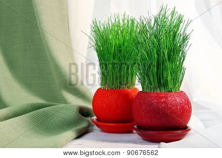 Green grass in pots on fabric background