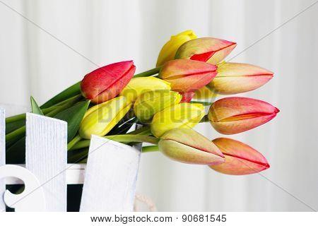 Beautiful tulips in ornamental flowerpot close up