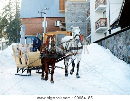 Wagon with horses over snow in wintertime