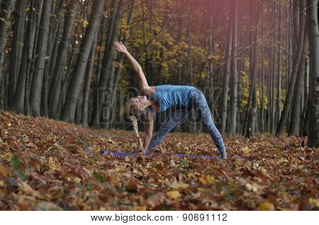 Young Woman Doing Yoga Asanas In Autumn Forest. Trikonasana