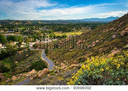 Yellow Flowers And View Of Trail At Mount Rubidoux Park, Riverside, California.