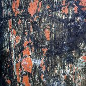 image of scratch  - Background Texture Of Scratched And Damaged Paint On A Metal Industrial Surface - JPG