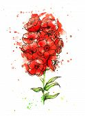stock photo of floral bouquet  - Red flower - JPG