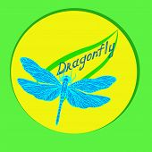 picture of dragonflies  - delicate dragonfly on the contour of the green leaf and the inscription dragonfly - JPG