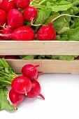 pic of crate  - Macro of fresh red radish vegetable in wooden crate - JPG