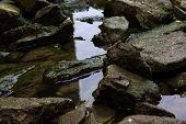 stock photo of green algae  - Stones in the water covered by green algae - JPG