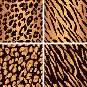picture of mimicry  - Set leopard print pattern - JPG