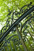image of wrought iron  - Old wrought iron gate in a French park - JPG