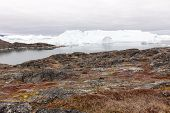 picture of arctic landscape  - Arctic landscape in Greenland around Disko Island with icebergs - JPG