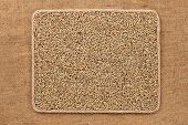 stock photo of sackcloth  - Frame made of rope with rye grains on sackcloth as background texture - JPG