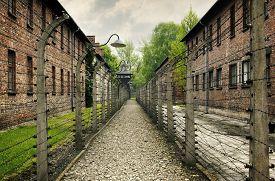 stock photo of horrific  - Auschwitz - JPG