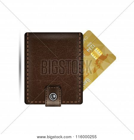 Wallet And Credit Card.  Vector Illustration
