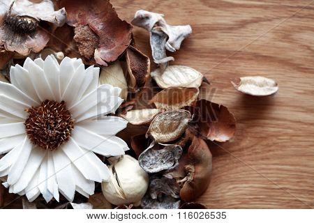 Floral Aroma Decoration