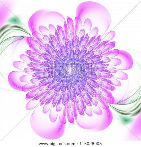 Abstract Floral Spiral