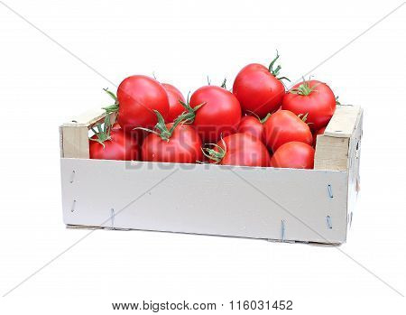 Harvest Red Ripe Tomatoes In Wooden Box Isolated