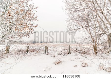 Countryside Winter Landscape With A Fence