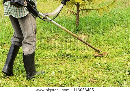 Lawn Mower Worker Cutting Grass In Garden With The Weed Trimmer