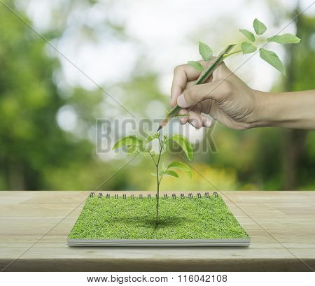 Hand With Pencil Leaf Drawing A Tree Growing From An Open Book On Wooden Table Over Green Tree Blur