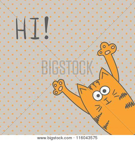 Funny cat, hi greeting card.