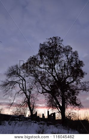 Picturesque dusk in the countryside in wintertime