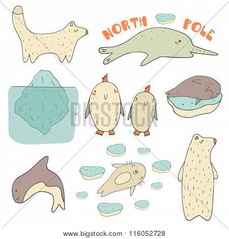 North pole animals set