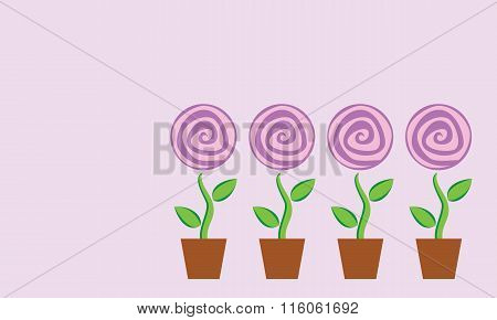 Four Potted Flower