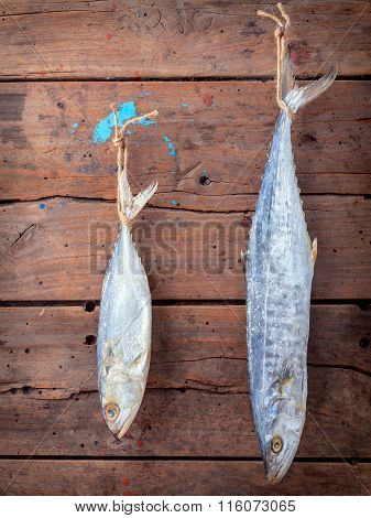 Fish Preservation By Drying . Sardine And Barracuda Salted Hanging On Old Wooden Background .