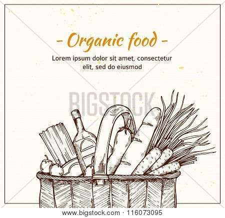Hand Drawn Vector Illustration - Supermarket Shopping Basket With Organic Food. Grocery Store.