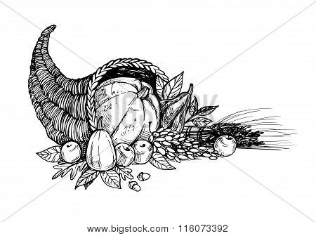 Hand Drawn Vector Illustration - Thanksgiving Day. Cornucopia