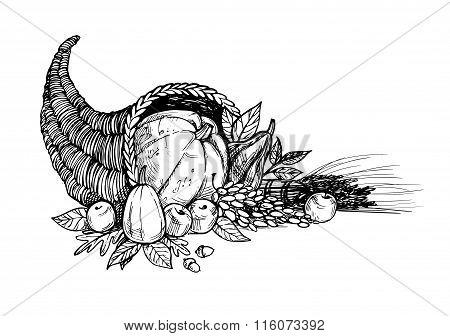 Hand Drawn Vector Illustration - Thanksgiving Day. Cornucopia