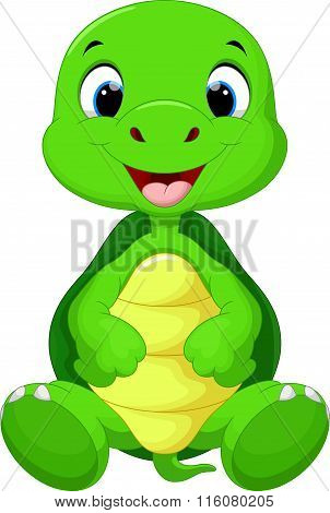 Cute baby turtle cartoon sitting