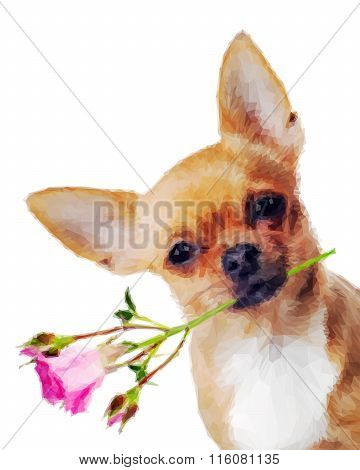 Chihuahua Dog With Rose Isolated On White Background In Low Poly Style.