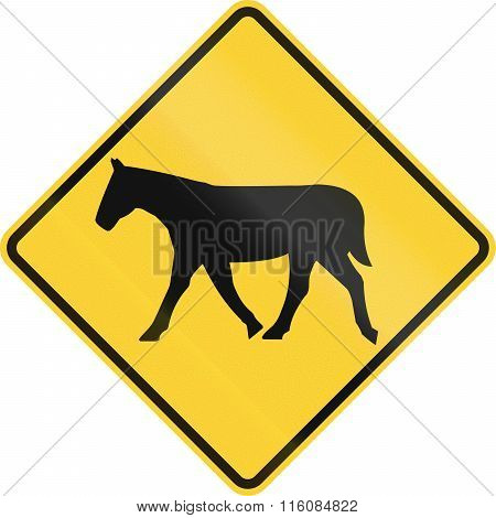 Road Sign Used In The Us State Of Delaware - Horse Crossing
