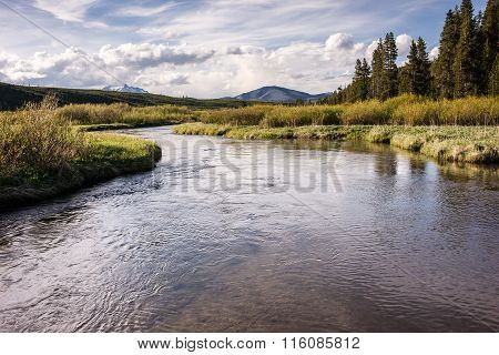 A pristine trout stream meanders through a valley in the Yellowstone back country.