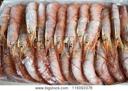 Frozen Raw King Prawns