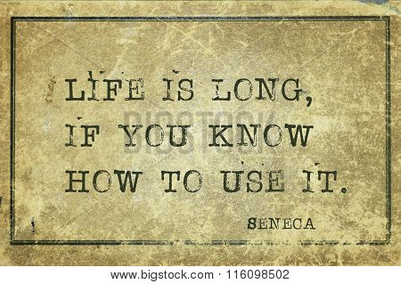 Life Long Seneca