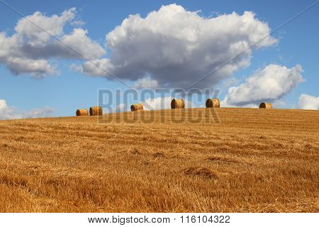 Hay bales with blue sky