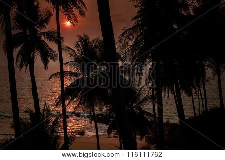 Sun Disk Over Sea And Beach Through Silhouette Of Palms