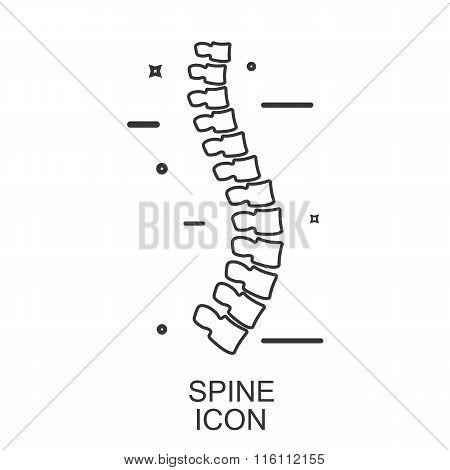 Spine Diagnostic. Vector