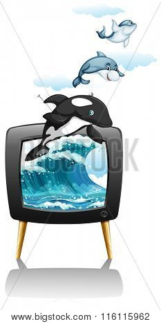 Dolphines swimming and jumping on TV illustration