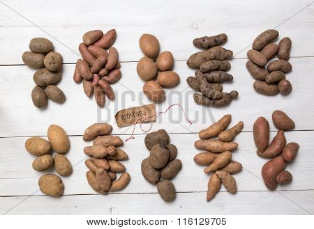 Potatoes On A White Wooden Board Concept