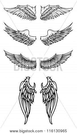 Set Of Wings In Vector