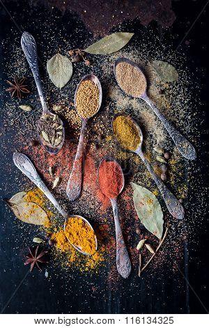 Food spice ingredients for cooking dark background