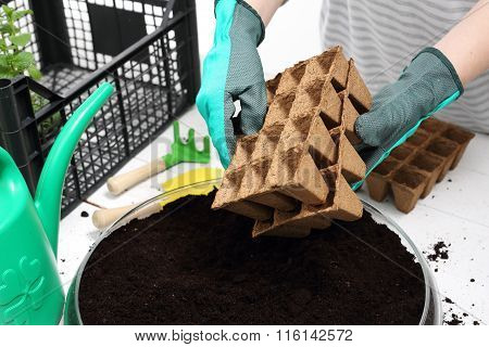 Pot peat, natural crops
